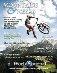 2019 Mountains and Mesas