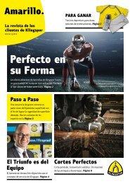 Amarillo. La revista de los clientes de Klingspor Edición 1|2019
