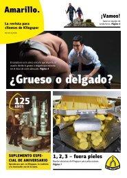 Amarillo. La revista de los clientes de Klingspor Edición 1|2018