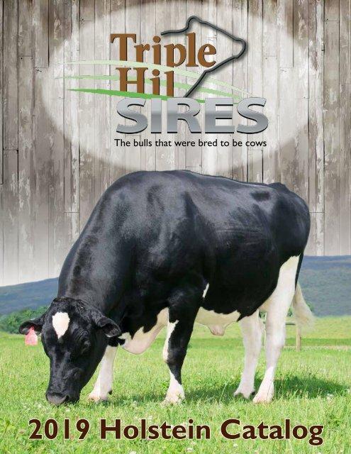 2019 Holstein Catalog