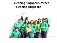 carpet cleaning-converted
