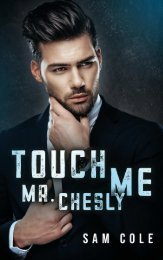 Leseprobe aus der Gay Romance  »Touch Me, Mr. Chesly«