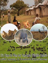 It's Time to Plan for Tanzania Wildlife Safaris with Luxury & Comfort Experiences