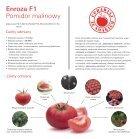 Leaflet_Pink tomato_Enroza_2019 - Page 2