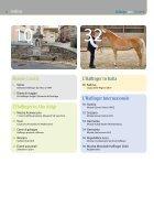Haflinger Info – agosto 2019 (prova di lettura) - Page 2