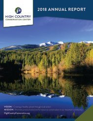 2018 HC3 Annual Report