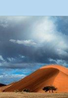 Unterwegs in Namibia - Seite 2