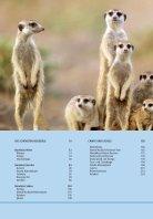 Unterwegs in Namibia - Seite 6