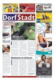 DorfStadt 11-2019