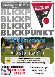 Blickpunkt 01 VfB-Stuttgart II