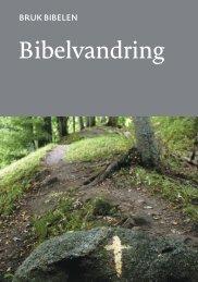 Bruk Bibelen: Bibelvandring (nn)