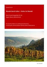 Studie Kultur Region Oberes Mittelrheintal 2019 - Davide Brocchi