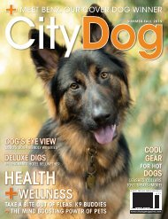 CityDog Summer-Fall 2019 Issue