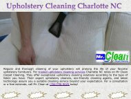 Trusted Upholstery Cleaning Service in Charlotte NC