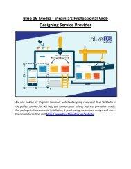 Blue 16 Media - Virginia's Professional Web Designing Service Provider