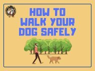 How to Walk Your Dog Safely