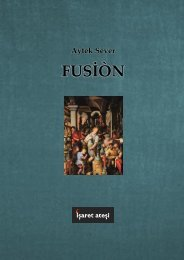 Aytek Sever - Fusiòn