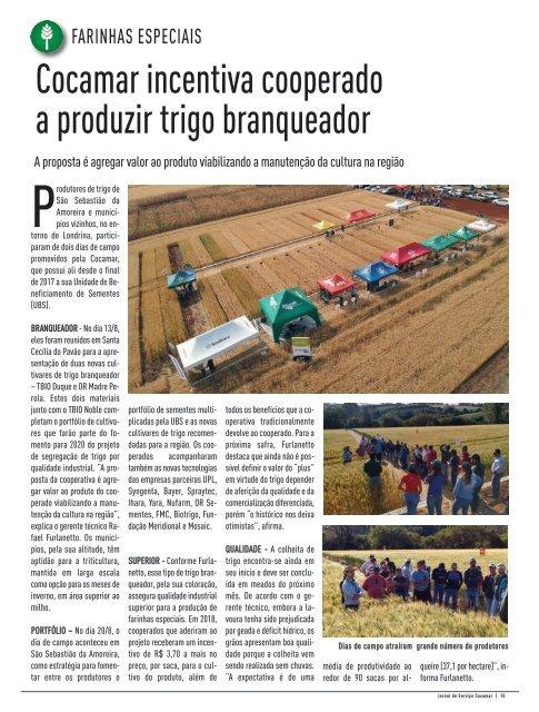 Jornal Cocamar Setembro 2019