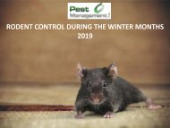 Rodent Control during the Winter Months 2019