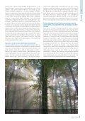 Revija Lipov list, junij 2019 - Page 5