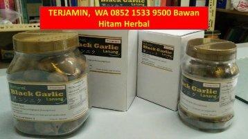 TERJAMIN,  WA 0852 1533 9500 Bawan Hitam Herbal