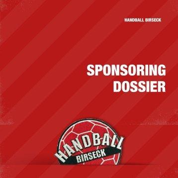 Sponsoring Konzept Handball Birseck