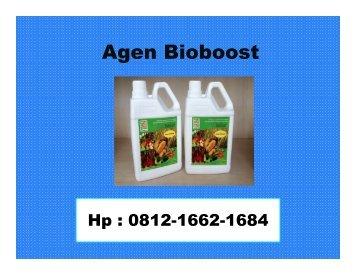 Bioboost Untuk Padi ,HP/WA : 0812-1662-1684