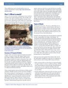 Hydrophyte Volume 23 Issue 4 - September 2019  - Page 7