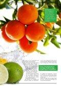Sachwert Magazin ePaper, Ausgabe 83 - Seite 7