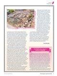 Revista Vegetus nº 33 ( Septiembre - Diciembre 2019) - Page 7