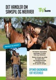TDJhors - Brochure - 2019