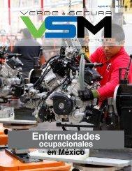 Edición 3. Agosto 2017. Revista Verde & Segura Manufactura