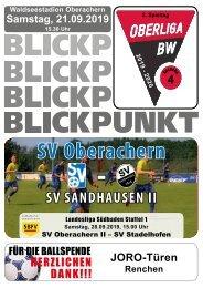 Blickpunkt 04 SV-Sandhausen-II