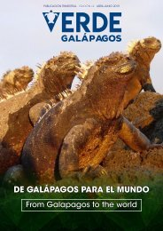 Verde Galápagos #2