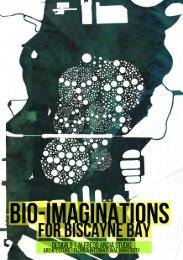 Bio-Imaginations for Biscayne Bay, 2019