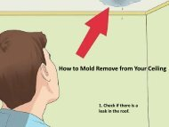 How to Mold Remove from Your Ceiling