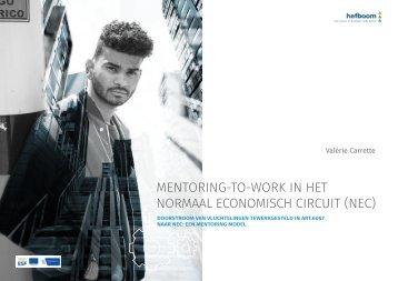 hefboom mentoring NEC-vs11-bis-laatste versie Katelijne