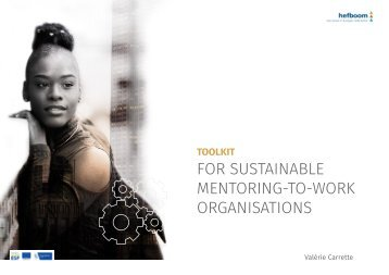 Tool for sustainable mentoring to work organisations