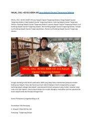 HALAL, CALL +62 811-8204-142 Jasa Aqiqah Ciputat Tangerang Selatan