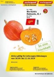Flugblatt Kiennast und Pilz & Kiennast Nr. 20