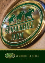 Summerhill Sires Brochure 2019/2020