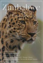 Zimbabwe brosjyre (2)
