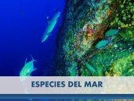Carlos Luis Michel Fumero - Especies del Mar