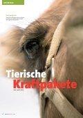 KLIMA SPEZIAL HITZEFREI - Mainova AG - Seite 4