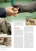 KLIMA SPEZIAL HITZEFREI - Mainova AG - Seite 6