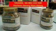 TERJAMIN,  WA 0852 1533 9500 Distributor Bawang Hitam Malang