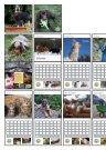 Pfotenhilfe Kalender 2020