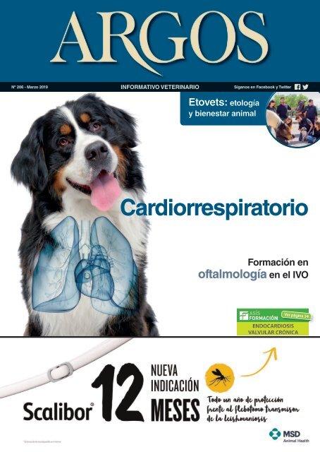 Camilla para animales Equipos y servicios para el cuidado de animales Camilla de rescate para perros y otros animales