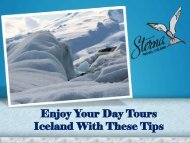 Enjoy Your Day Tours Iceland With These Tips