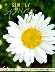 Spring Catalog_NO PRICES